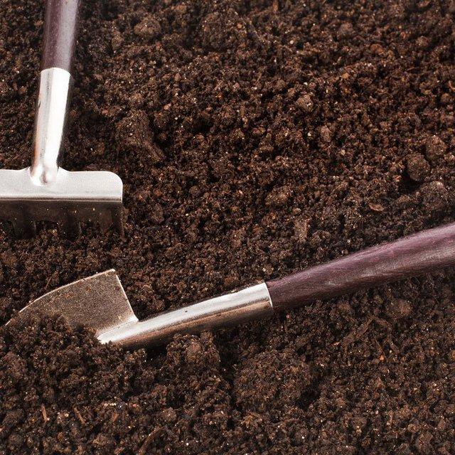 Top-soil-page-image-01-800x800